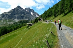 Passo Val Viola (2367m) e Rifugio Viola (2314m) (12)