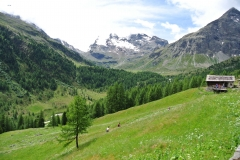 Passo Val Viola (2367m) e Rifugio Viola (2314m) (14)