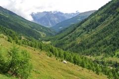 Passo Val Viola (2367m) e Rifugio Viola (2314m) (15)